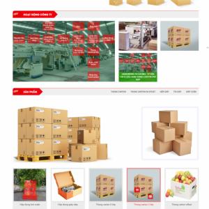 website bao bì